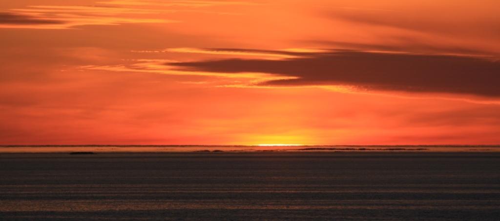 cotravel Reise Hurtigruten Spitzbergen_Felix Blumer_