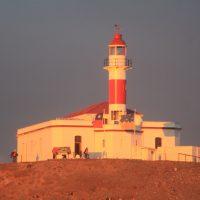 cotravel Reise-Blog BERICHT_Patagonien & Feuerland März 2015_Felix Blumer_Leuchtturm Magdalena Island