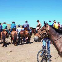 BERICHT_Mongolei 2015 mit Peter Achten_cotravel Reise-Blog_Titelbild