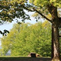 cotravel Blog UNTERWEGS_Frankreich & Irland mit Erwin Koller