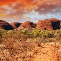 cotravel Reise-Blog ARTIKEL_Australiesche Benimmhilfen_Kurt Schaad