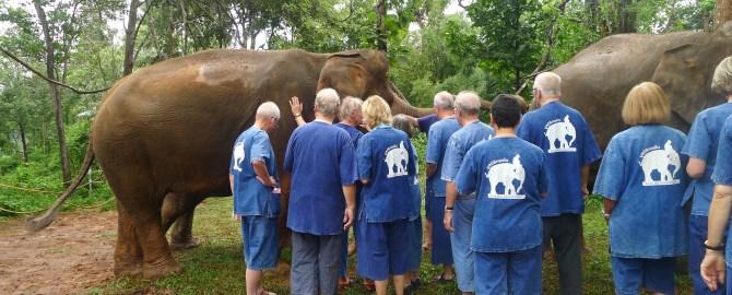 cotravel-blog-elefanten-burma-thailand