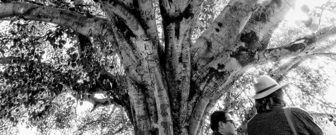 bhutan-gabor-kiss-blog