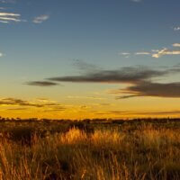 Studienreise-Australien-Ayers Rock Uluru