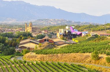 Studienreise-Spanien-Weingut-Rioja