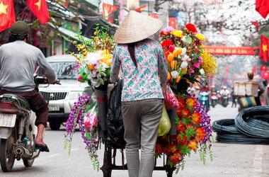 Studienreise-Teeroute-Vietnam