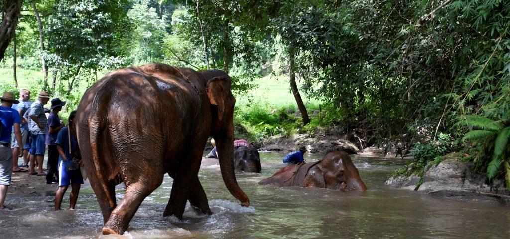 mekong-willi-ammann-Thailand-047