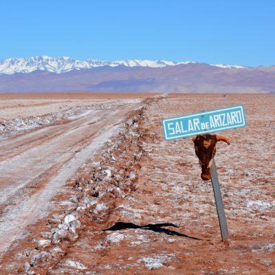 puna-argentinien-reise-023